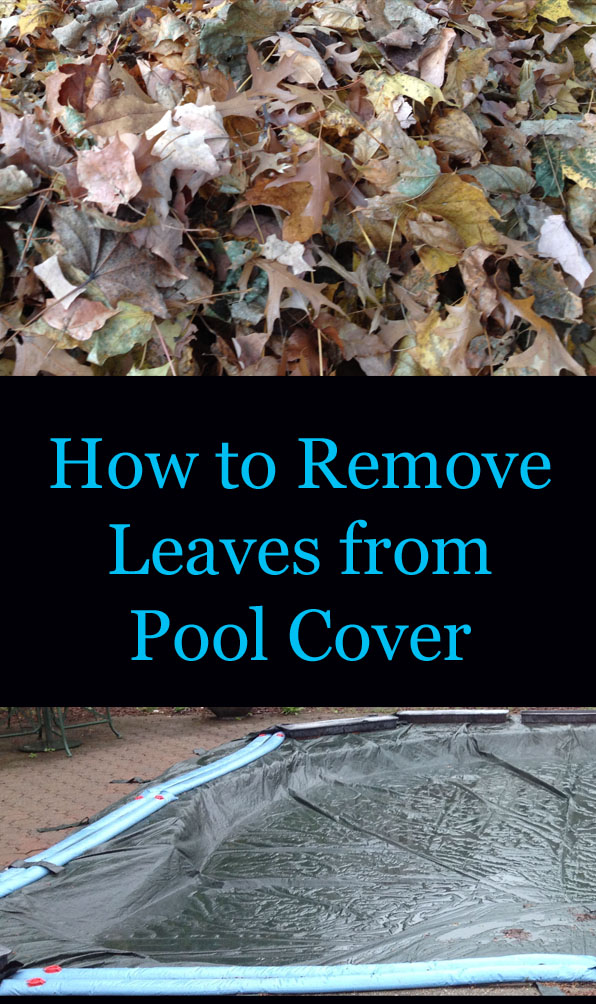 Remove leaves from pool cover