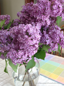 Purple lilacs in glass vase