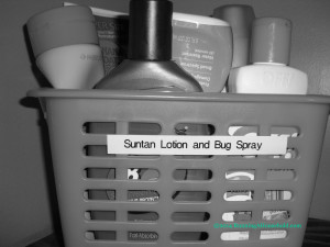 Bath Suntan Lotion and Bug Spray Basket 1