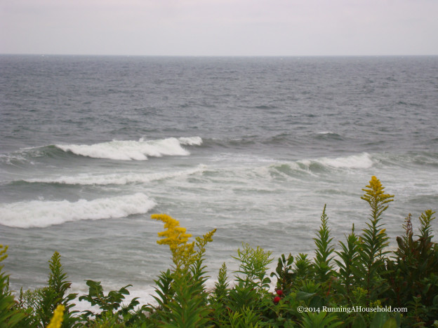 Ocean waves with wild flowers