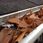 Gutters with Leaves